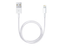Apple Lightning-kabel - Lightning / USB - 50 cm ME291ZM/A