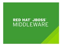 JBoss Data Grid - standardabonnemang (1 år) - 16 kärnor MW0906233